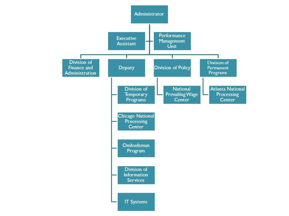 Office of Foreign Labor Certification's Structure